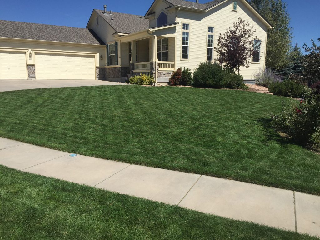 J. Rick is your lawn expert in Colorado