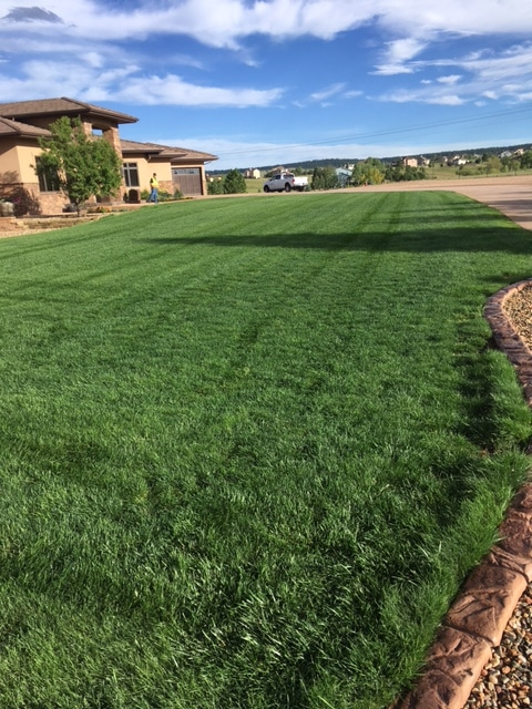 J. Rick provides affordable lawn seeding services in Colorado Springs.
