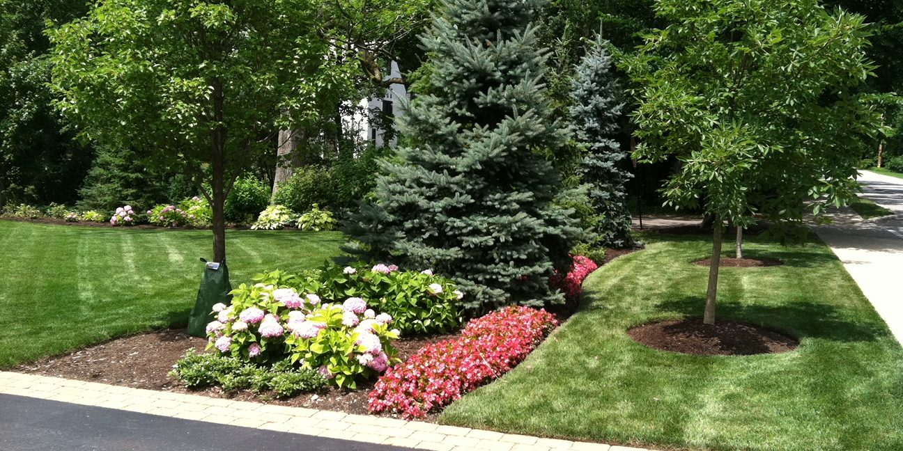 J. Rick is your plant and shrub specialists in Colorado springs, Colorado