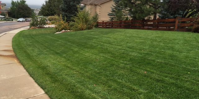 J. Rick provides affordable lawn fertilization services in Colorado Springs, CO
