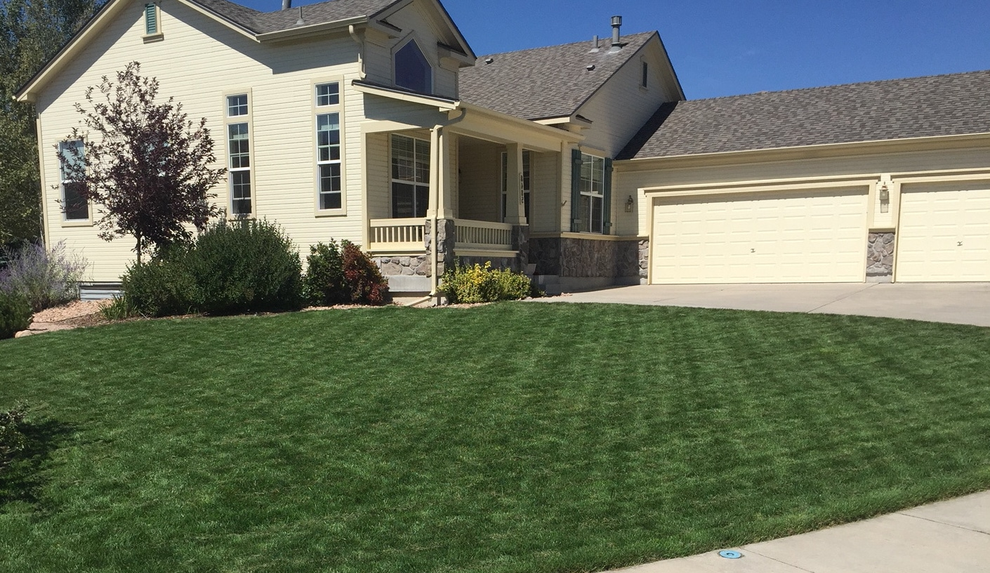 J. Rick is your lawn care specialists of Colorado Springs